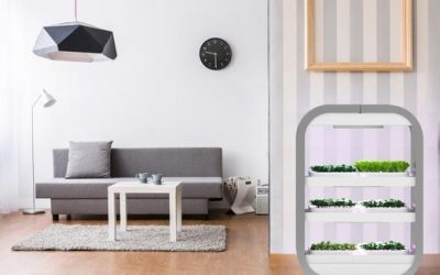 The future of food—functional furniture that works for you